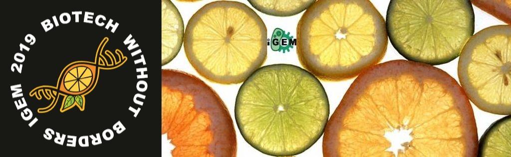 Team banner  featuring citrus