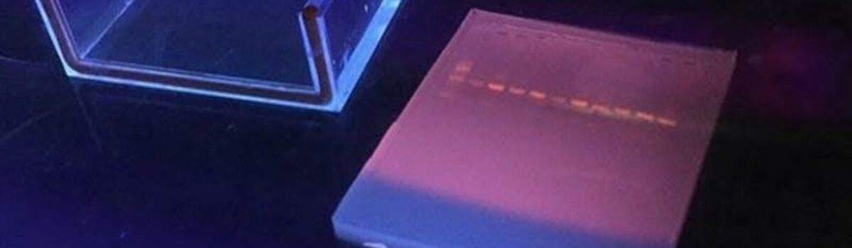 Lab Skills: Cutting and Measuring DNA