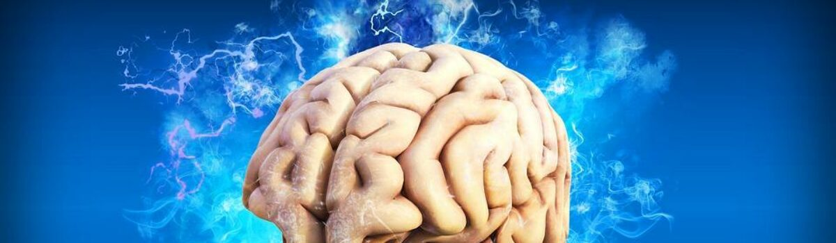 "Using 3D ""Mini-Brains"" to Unlock the Origins of Mental Disorders"