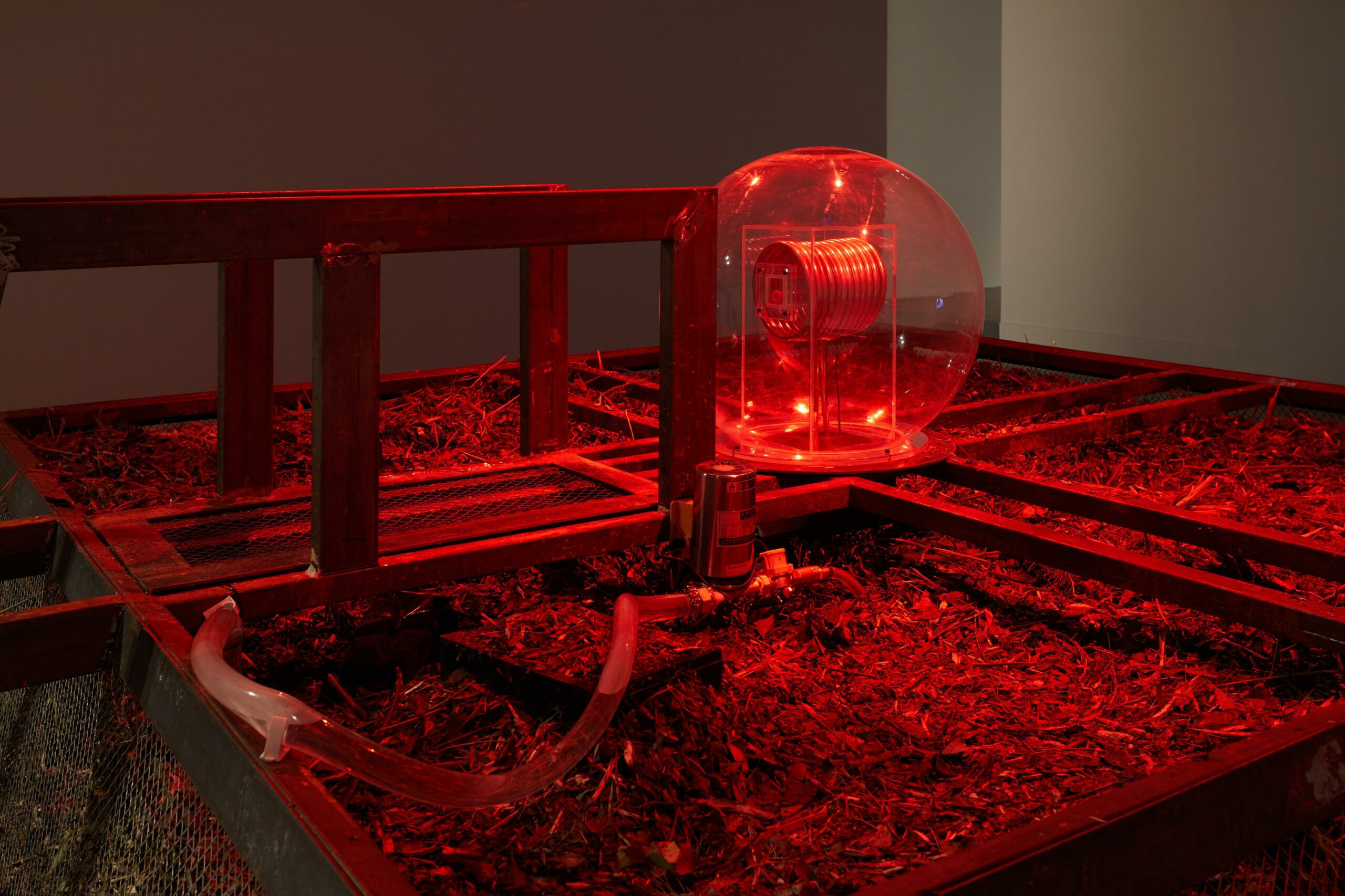 Would 'Lab Grown Everything' Really Save Us? A talk by Oron Catts