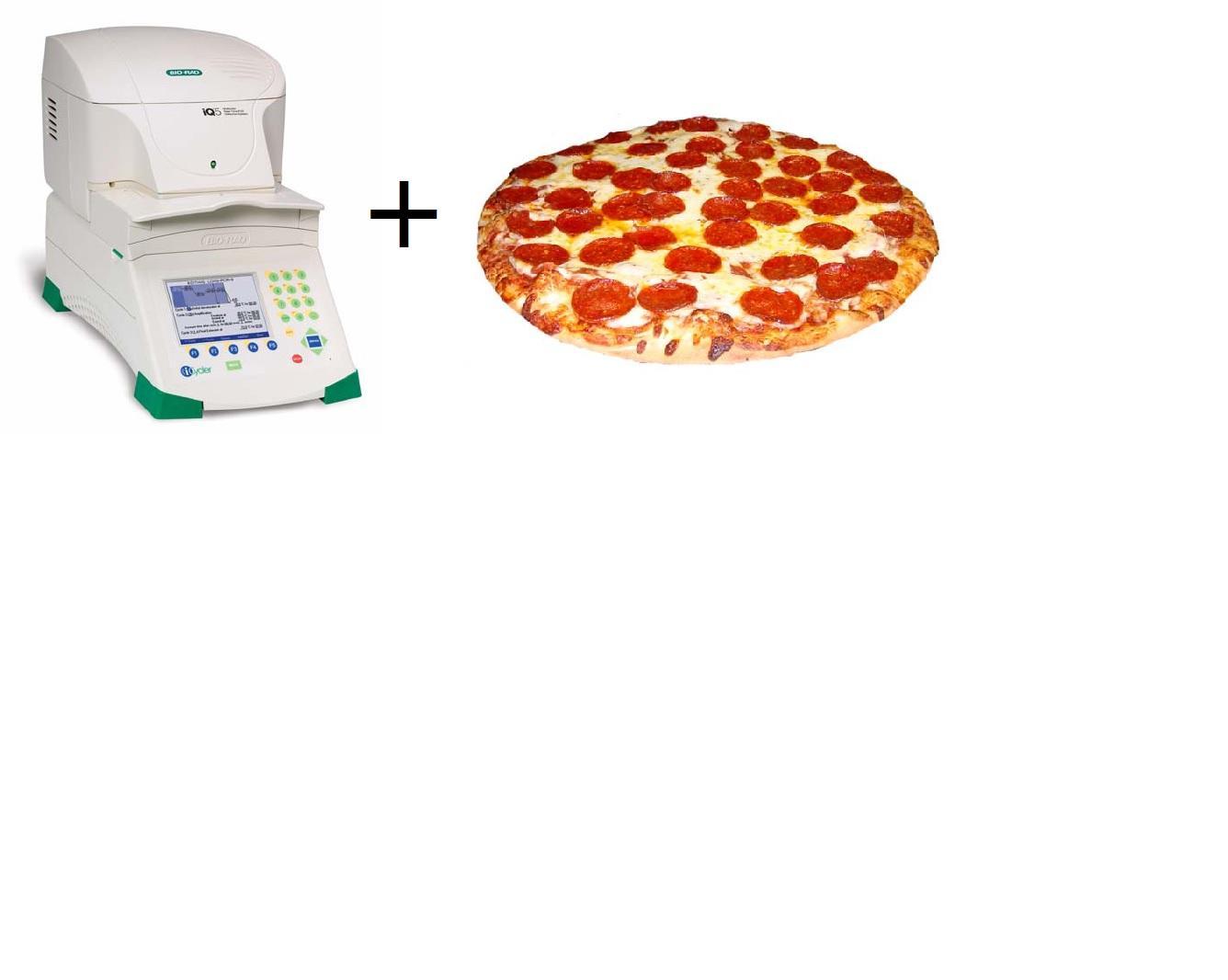 PCR + Pizza