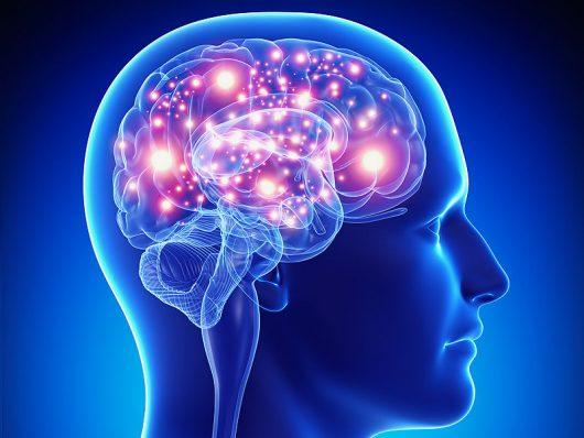 The Science of Epilepsy: What is it and how can we understand it?
