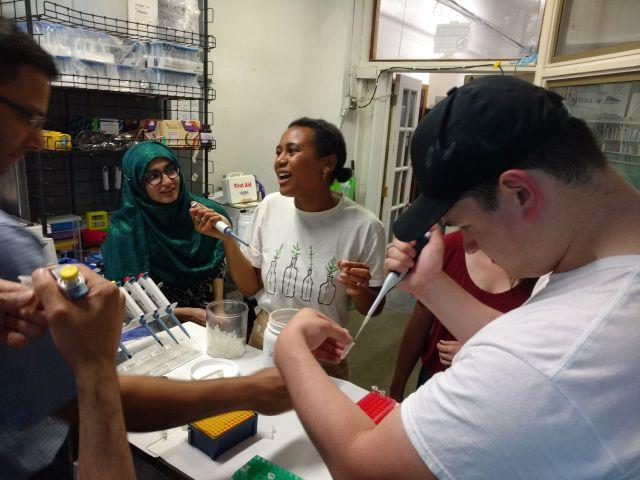 Lab Skills: Plasmid Preps